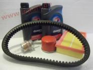 Microcar Virgo3, MC1, MC2 mit Lombardini LDW 502 - Großes Inspektionspaket